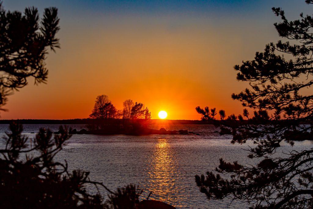 Puiden lomasta ja pienen saaren takaa näkyvä oranssi auringonlasku merellä.