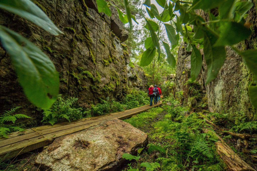 Vehreä luontopolku Ulkotammion kansallispuistosta