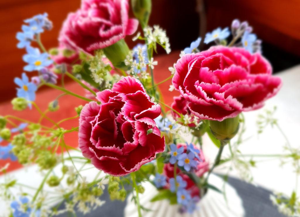 Suurempia punaisia ja pienempiä vaaleansinisiä kukkaisa valkoisessa maljakossa